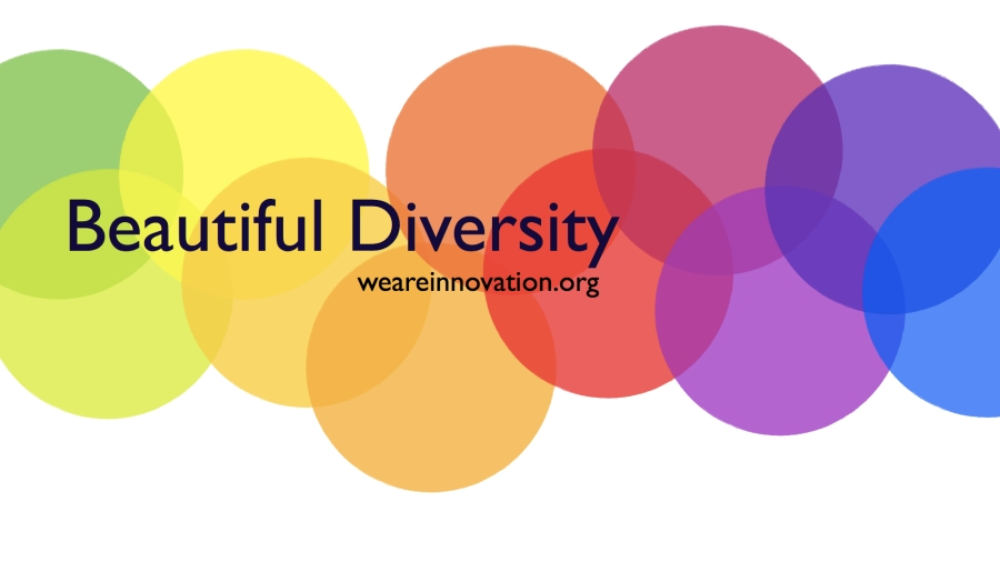 Innovation and diversity